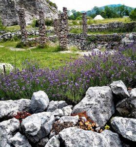 Botanická zahrada vlomu Dolní Kamenárka