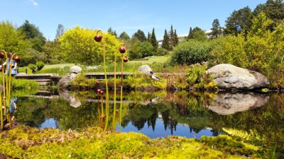 Botanická zahrada a arboretum Mendelovy univerzityBrno