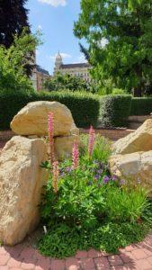 Botanická zahrada MU