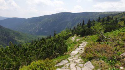 Cesta do Špindlerova mlýna z Labské boudy
