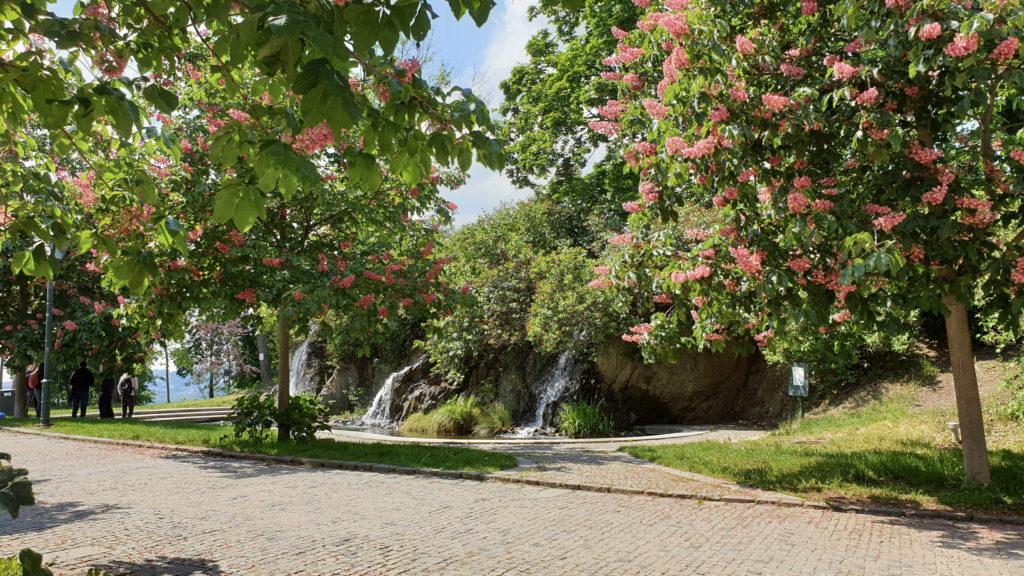 Brno, park Špilberk - umělé jezírko s vodopády