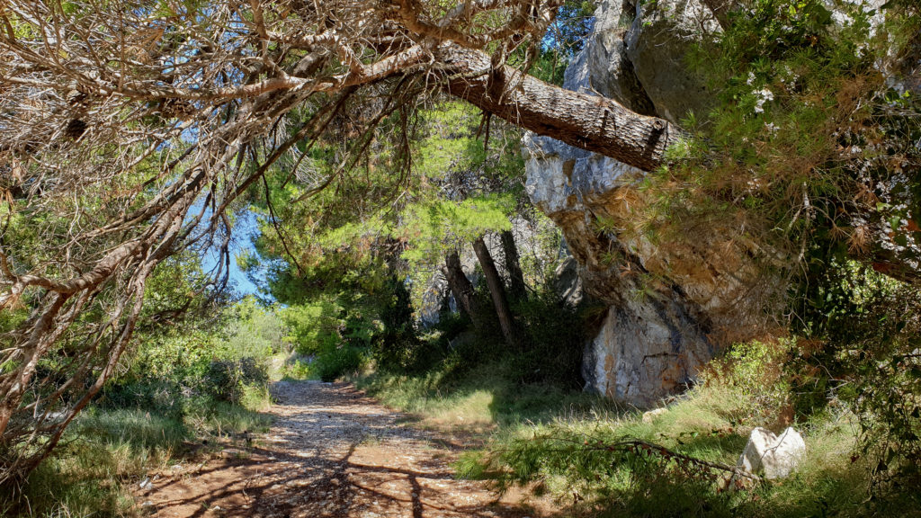 Cesta do Živogošće, Chorvatsko