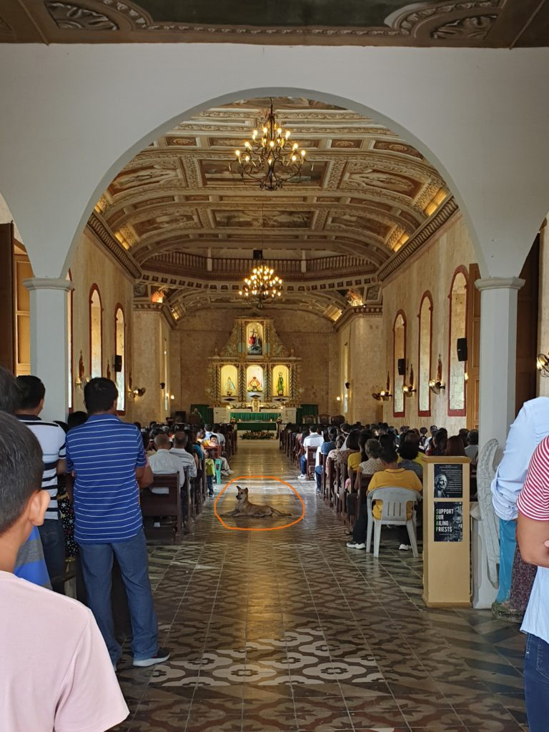Bohol - Cortes Sto Nino