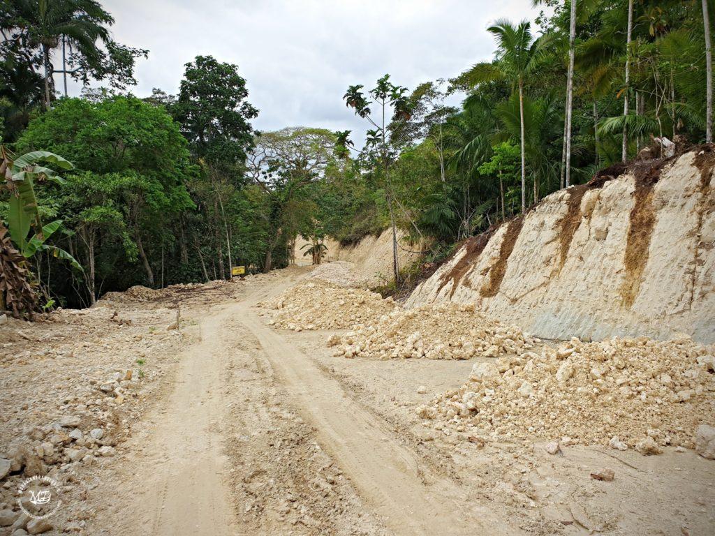 Cesta k Malingin Falls