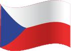 CZ Flag