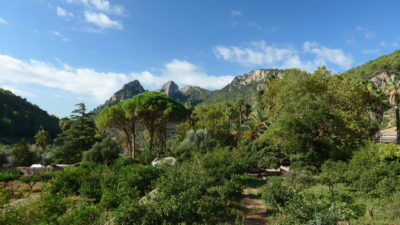 Jardins d'Alfabia