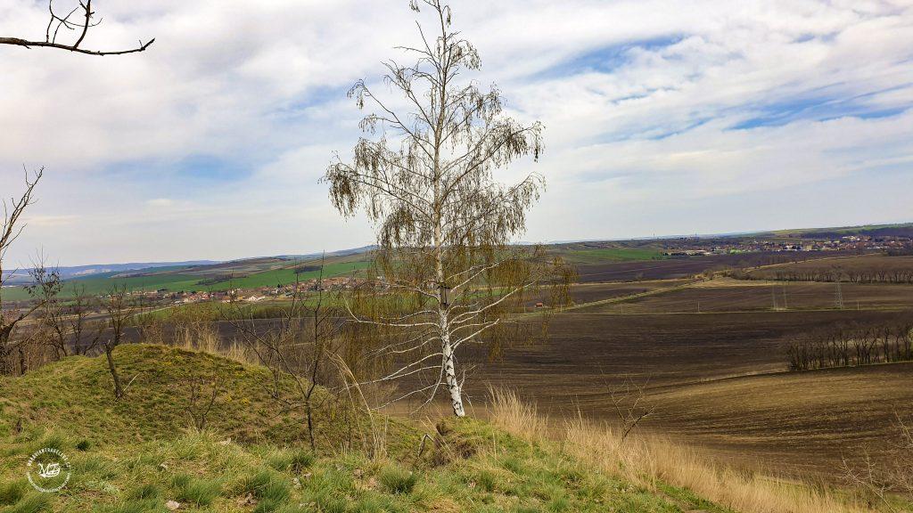 Kobylská skála- pohled na Terezín a Čejč